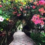 Perfect Belize Itineray