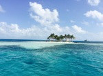 Silk Caye Belize Best Snorkeling